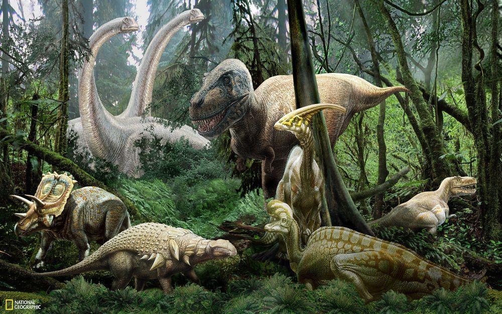 Brewster National Geographic Dinosaur Mural