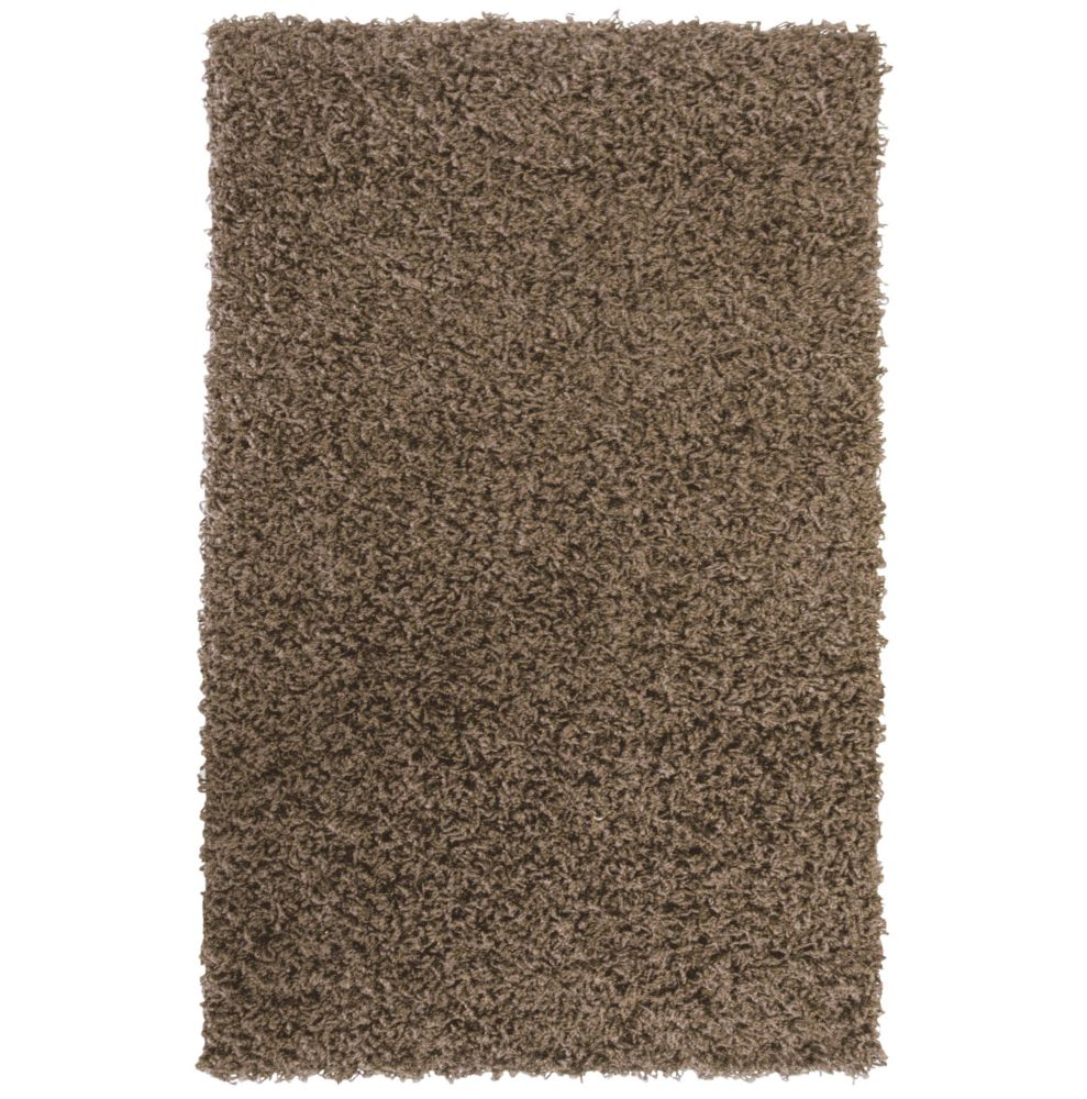 Value Shag Assorted 5 Ft. x 7 Ft. Area Rug