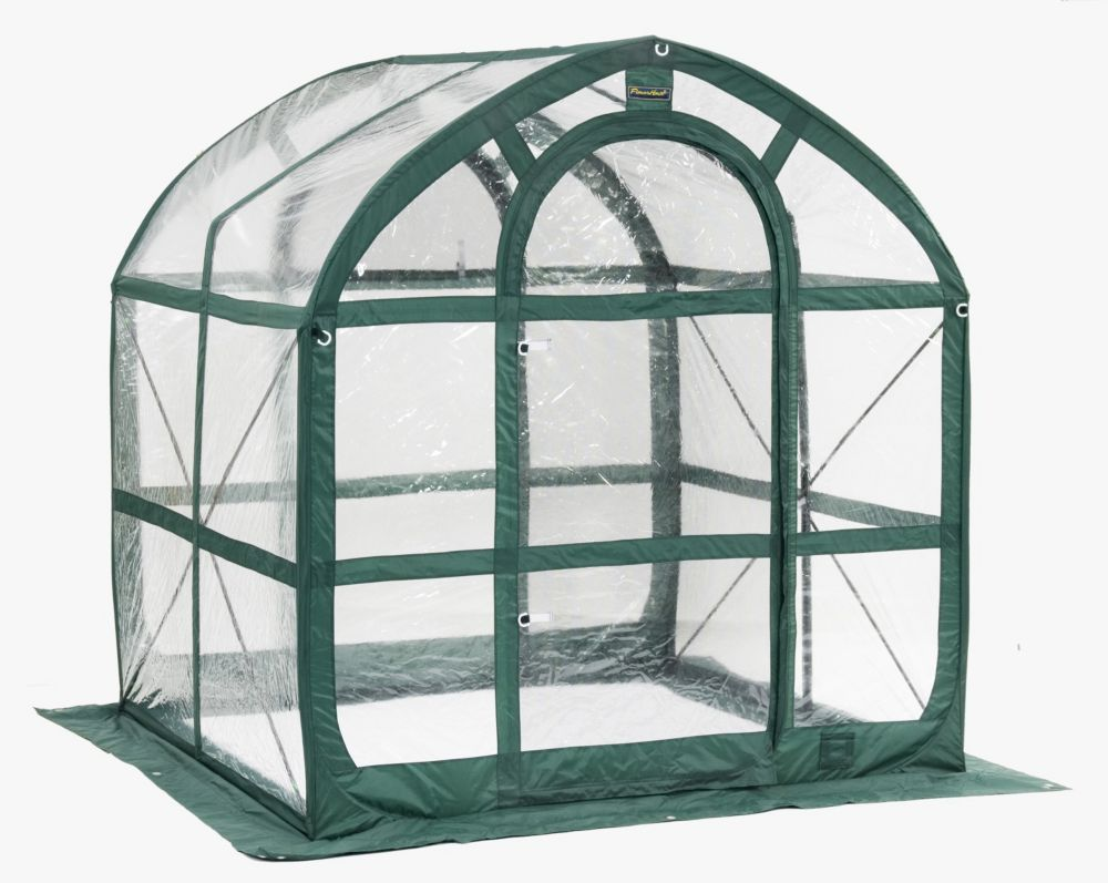 SpringHouse Clear Easy Pop-Up Greenhouse - 6 Foot x 6 Foot