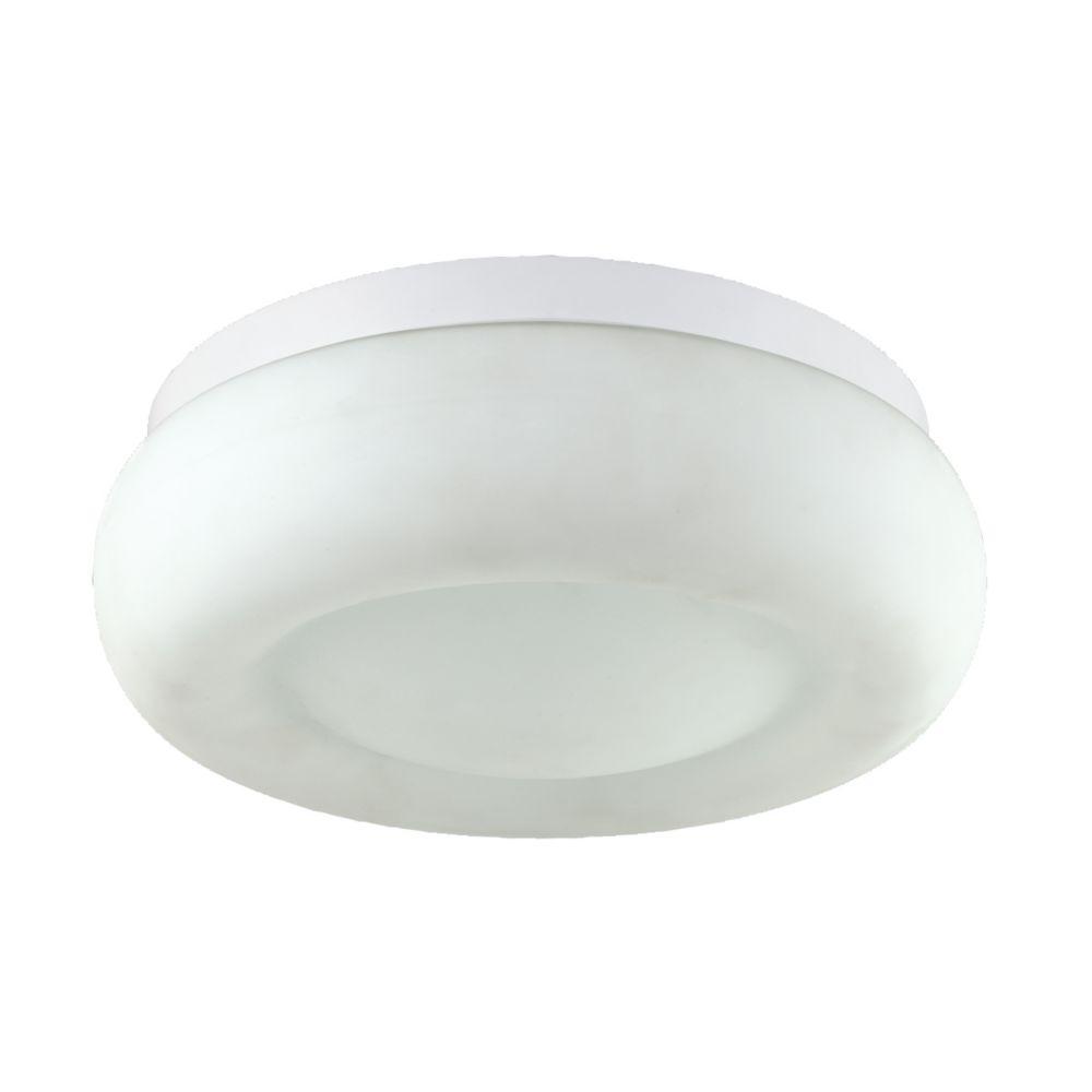 Disk Collection 1 Light White Large Flushmount