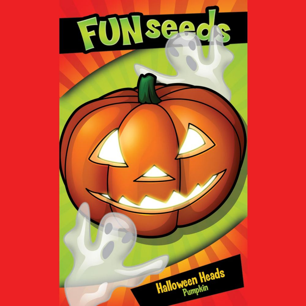 Fun Seeds Pumpkin Head                       (Pumpkin Jack O Lantern)
