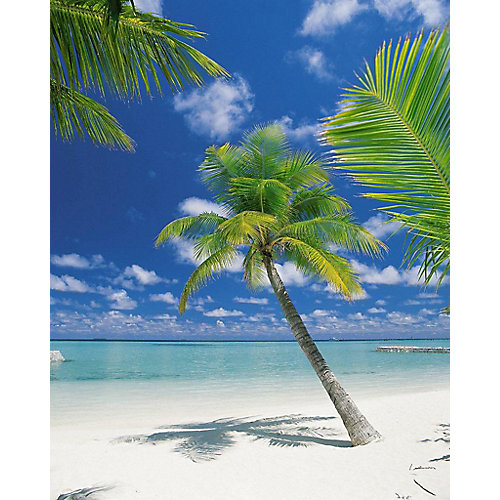 6 Feet x 8 Feet 4 Inches Ari Atoll Wall Mural