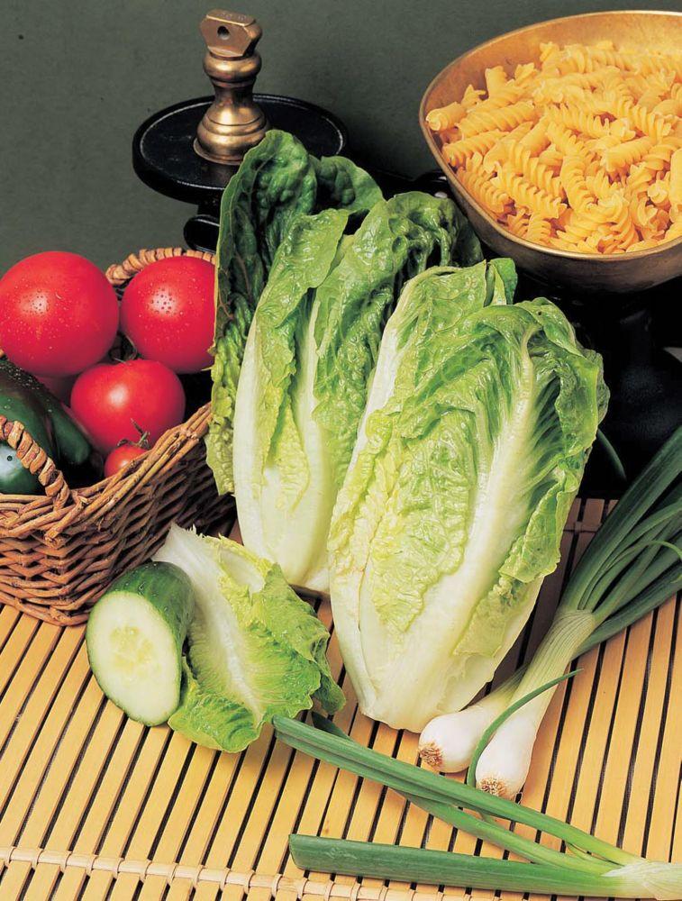 Lettuce Counter 2012 in Canada