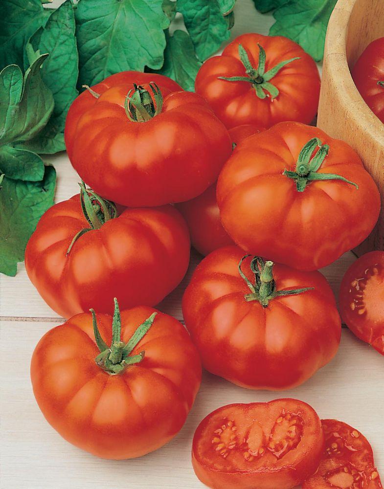 Tomato Beefsteak (Marmande)