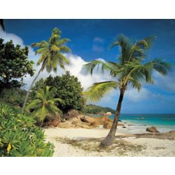 Komar 12 Feet 1 Inches x 8 Feet 4 Inches Praslin Wall Mural