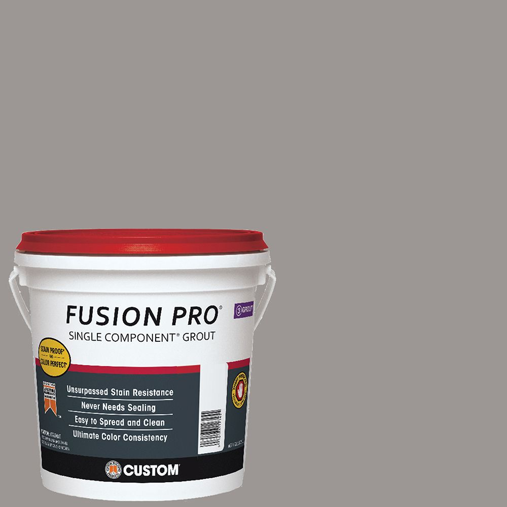 #165 Delorean Gray Fusion PRO - 1 Gallon CFP1651-2T Canada Discount