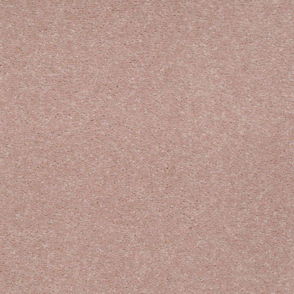 Enraptured I Colour 60 Azalea