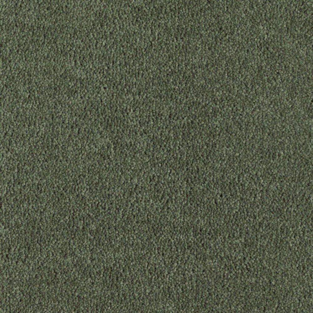 "Soft Collection ""Glorious"" Colour 55 Hidden Trail Sold by Sq. Ft."