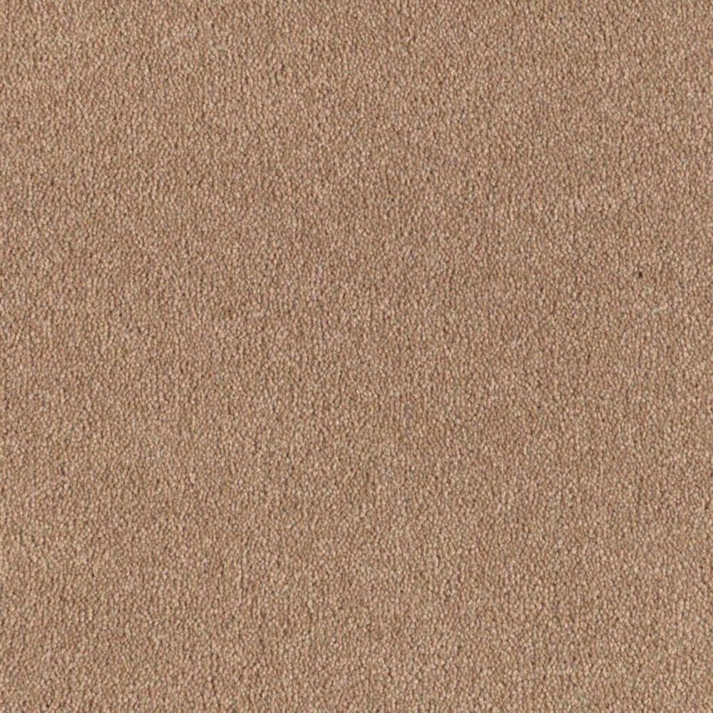 """Soft Collection """"Cachet"""" Colour 33 Fresh Scone Sold by Sq. Ft."""
