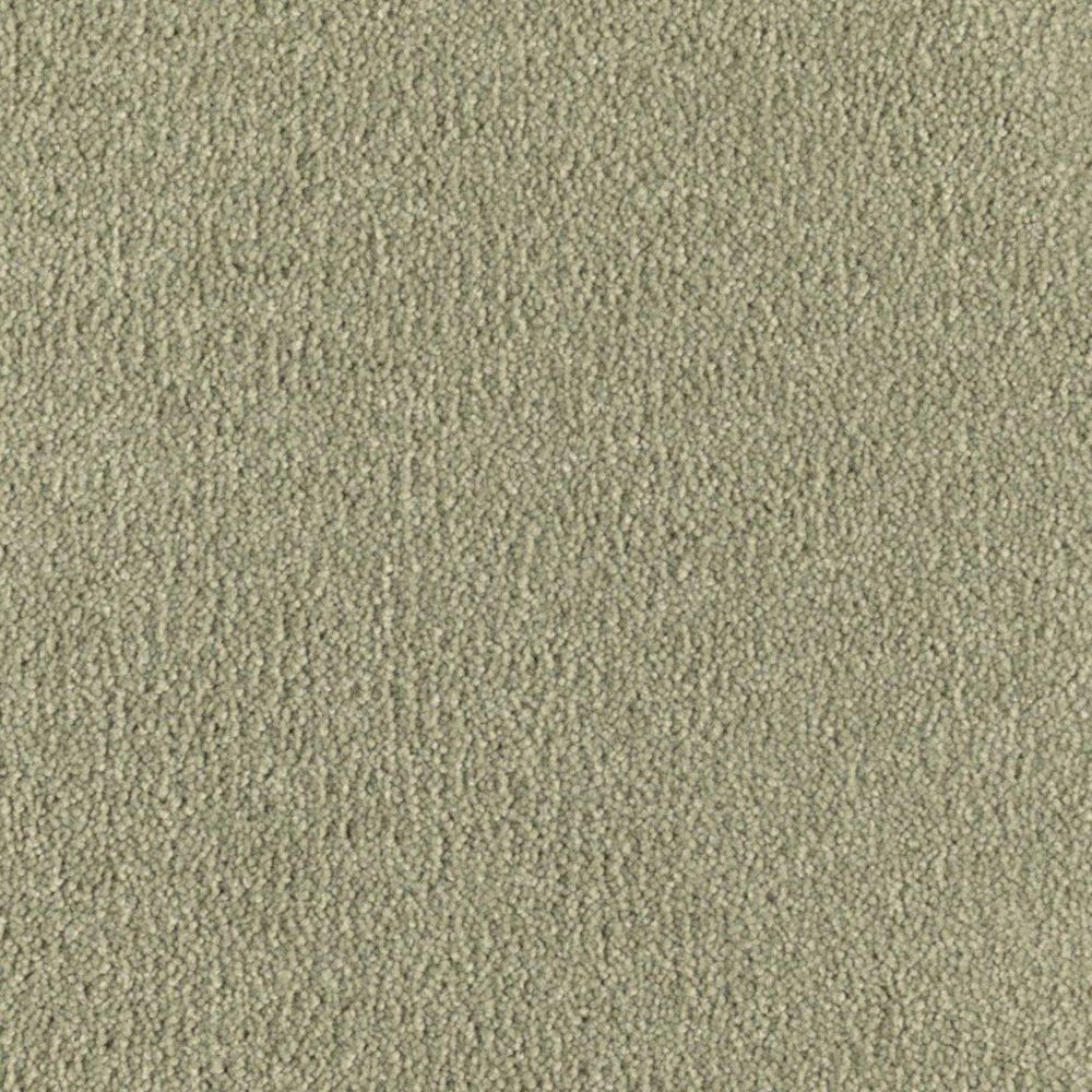 """Soft Collection """"Cachet"""" Colour 45 Sweet Pea Sold by Sq. Ft."""
