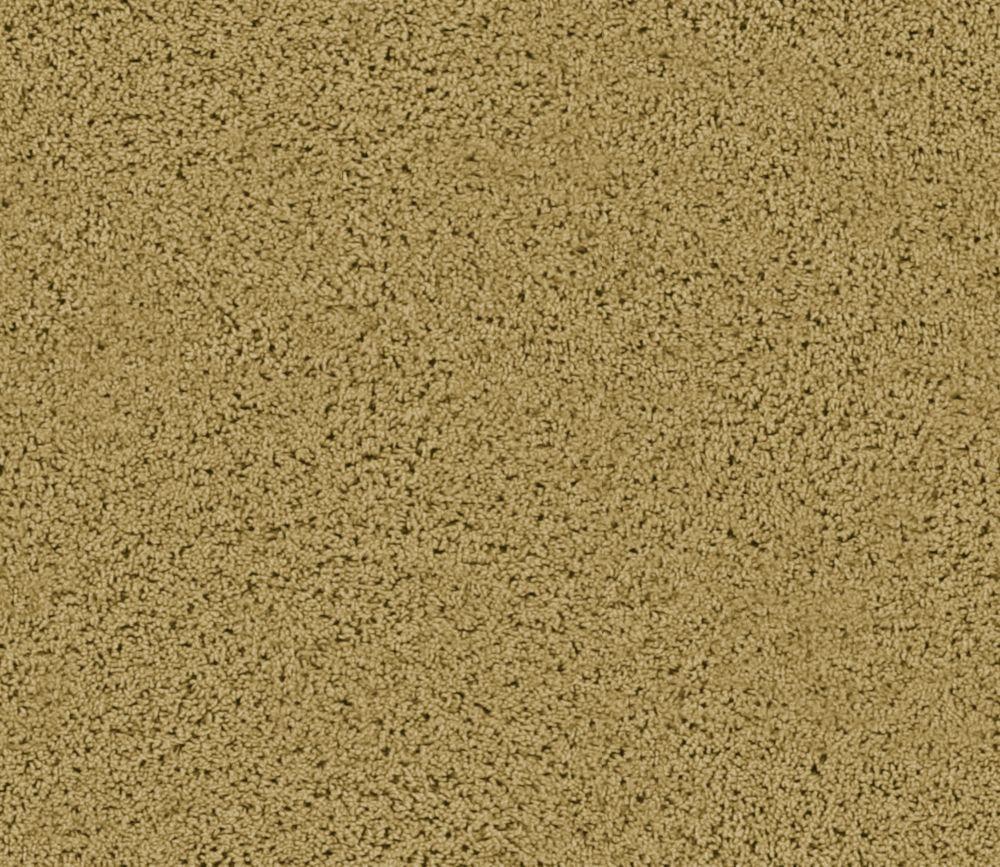 Enticing I - Nutria Carpet - Per Sq. Ft.