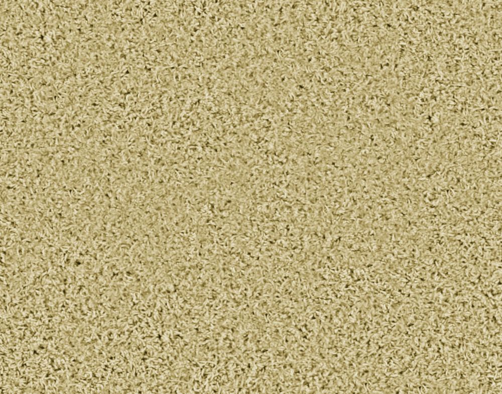 Pleasing II - Sandstorm Carpet - Per Sq. Ft.