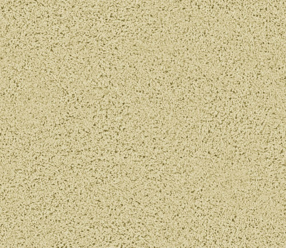 Enticing I - Cameo Carpet - Per Sq. Ft.