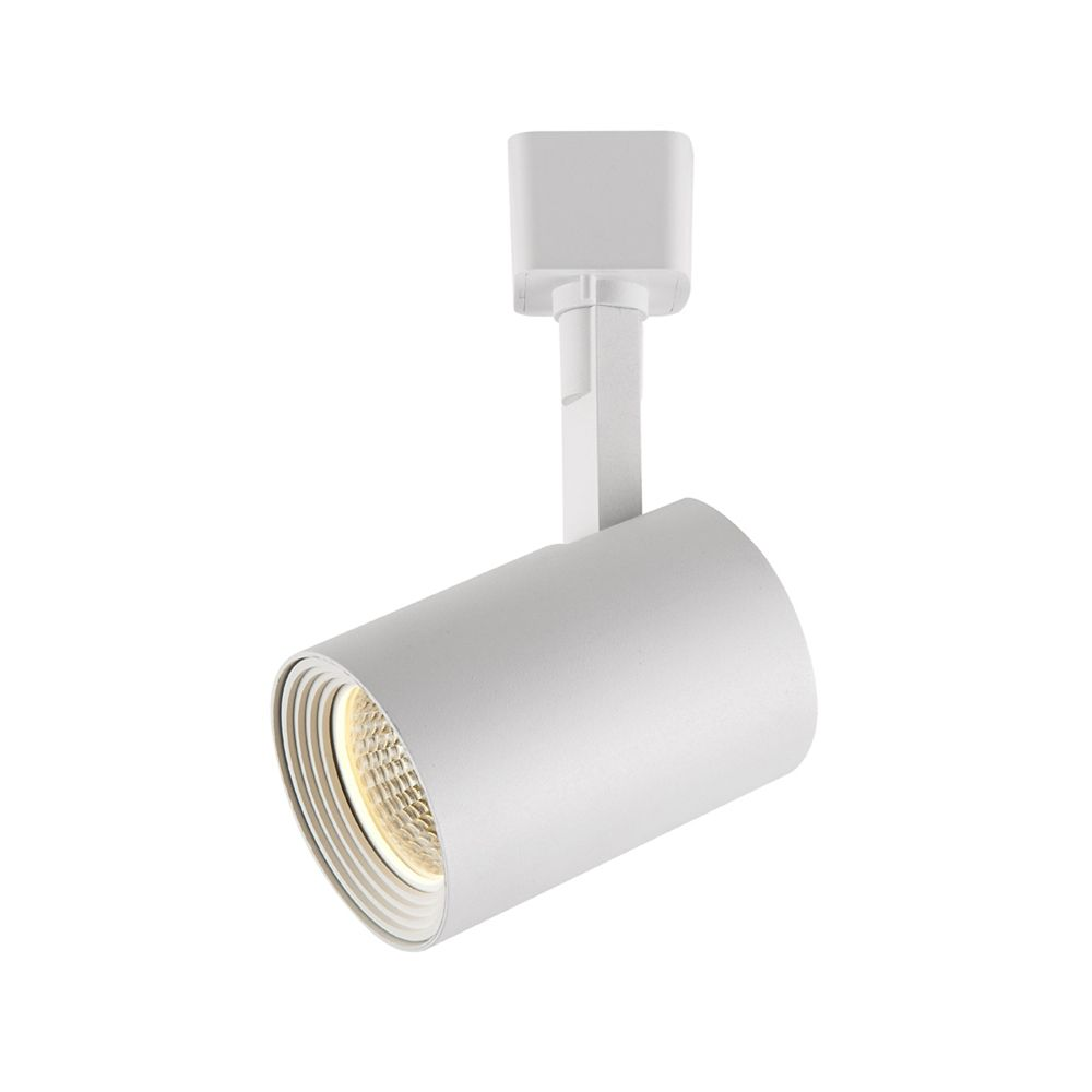 White Dimmable Led Track Cylinder