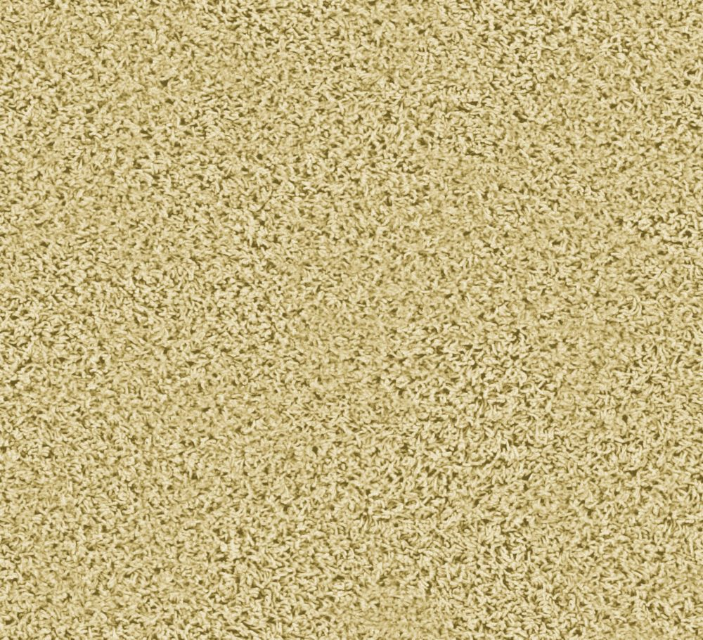 Pleasing I - Grain Carpet - Per Sq. Ft.