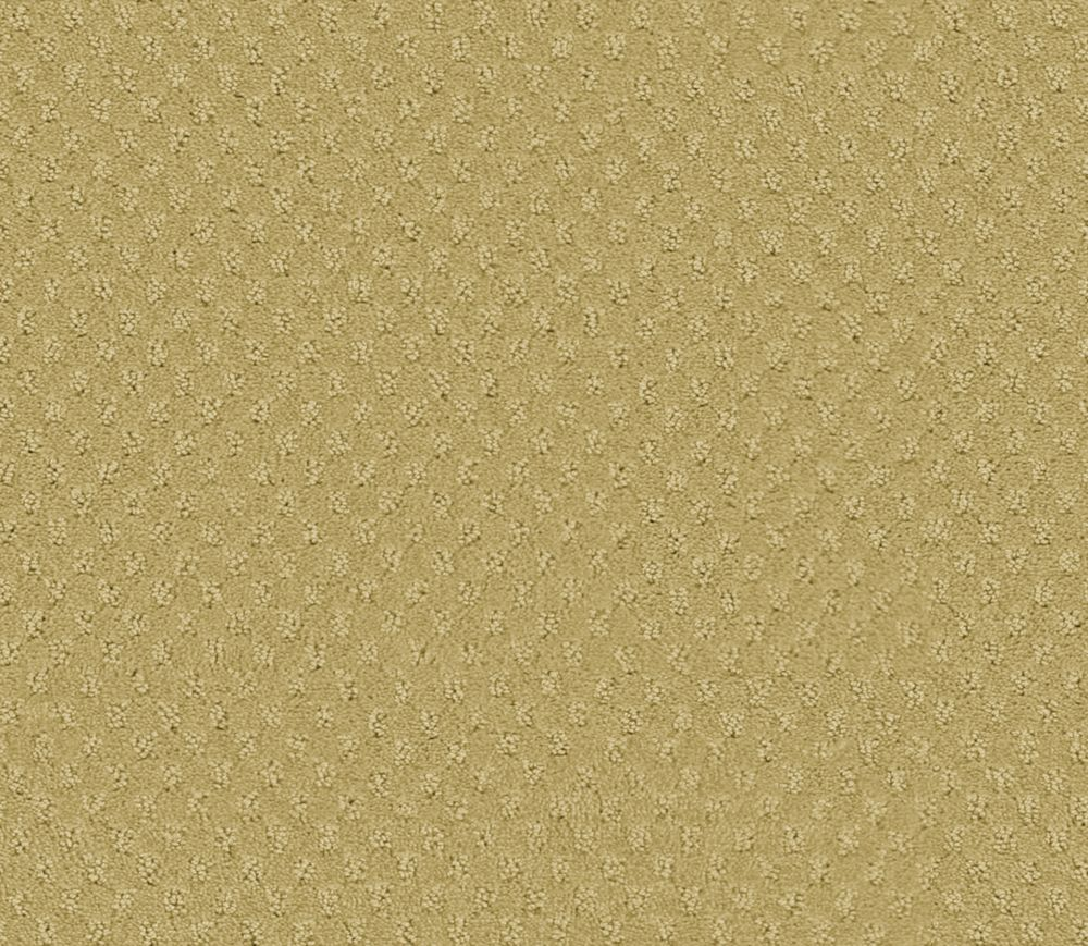 Inspiring II - Parchment Carpet - Per Sq. Ft.