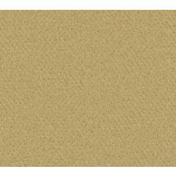 Beaulieu Canada Inspiring I - Parchment Carpet - Per Sq. Ft.