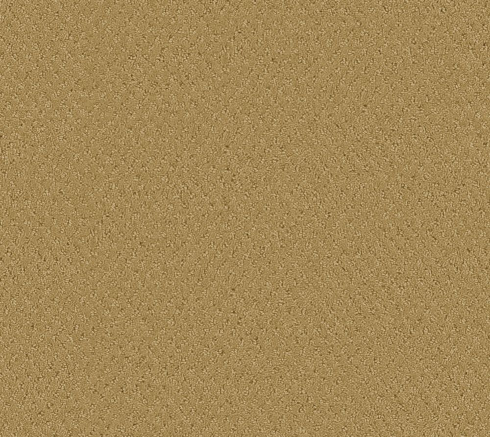 Inspiring I - Grège tapis - Par pieds carrés