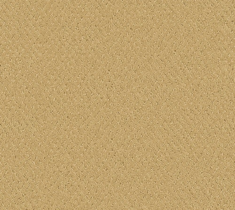Inspiring I - Maraïcher tapis - Par pieds carrés