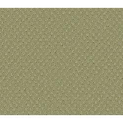 Beaulieu Canada Inspiring II - Soft Sage Carpet - Per Sq. Ft.