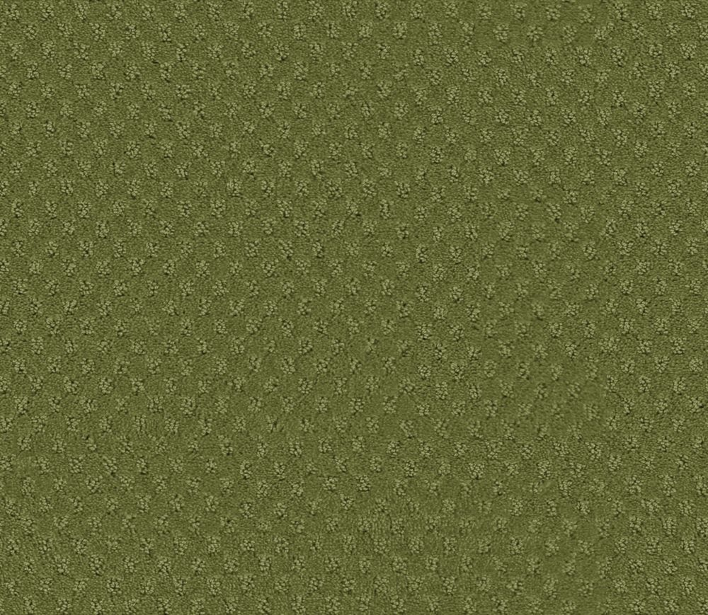 Inspiring II - Club d'horticulture tapis - Par pieds carrés