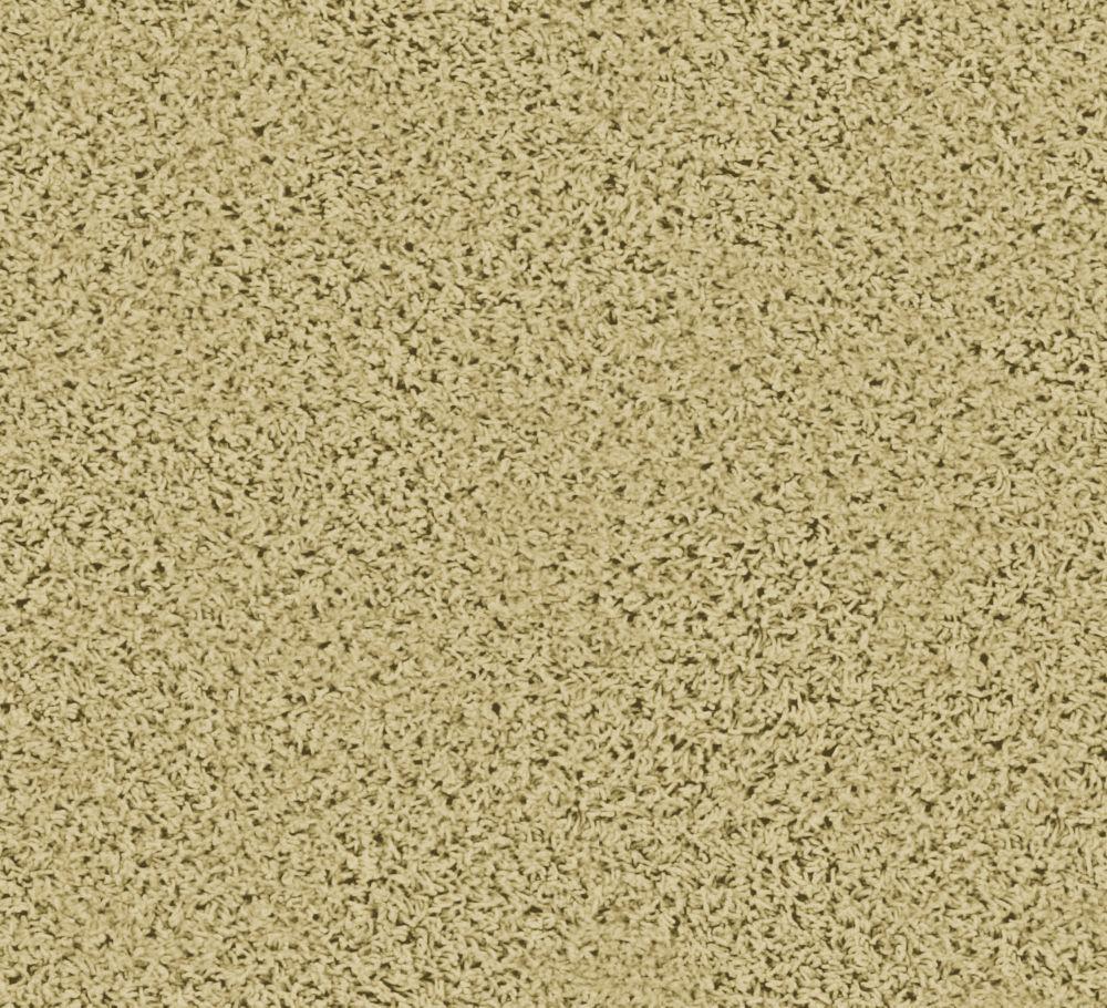 Pleasing I - Sandstorm Carpet - Per Sq. Ft.
