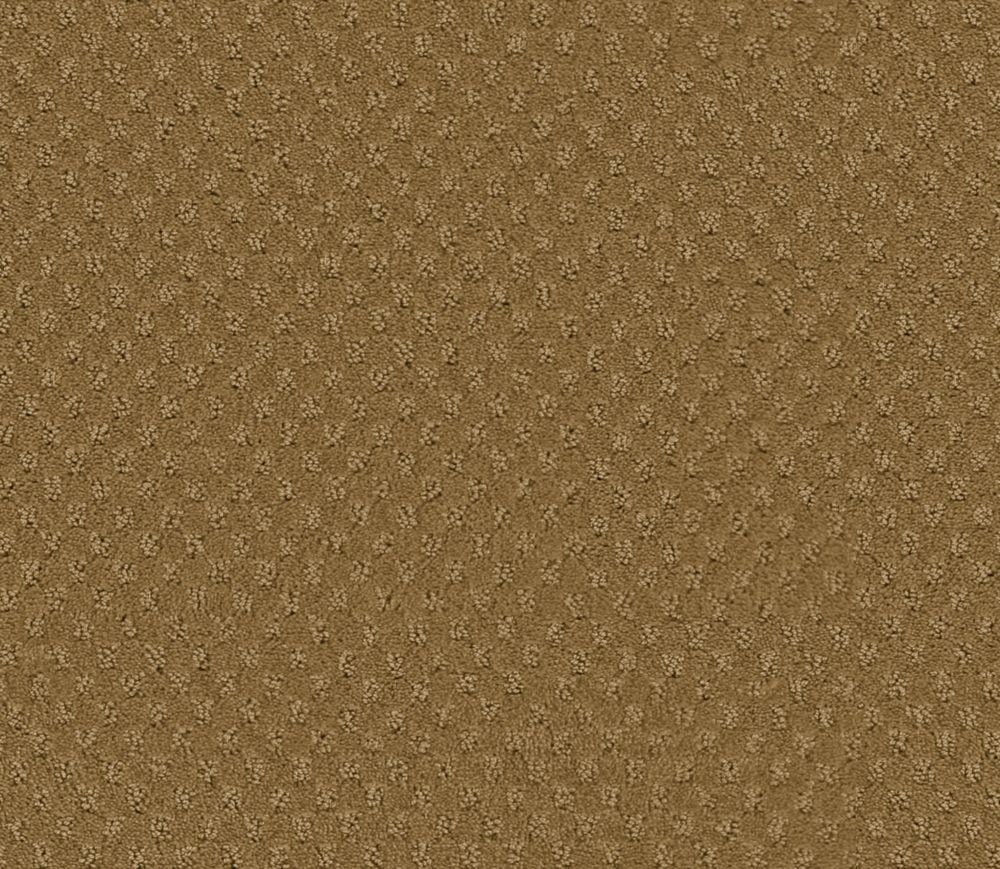 Inspiring II - Pecan Shell Carpet - Per Sq. Ft.