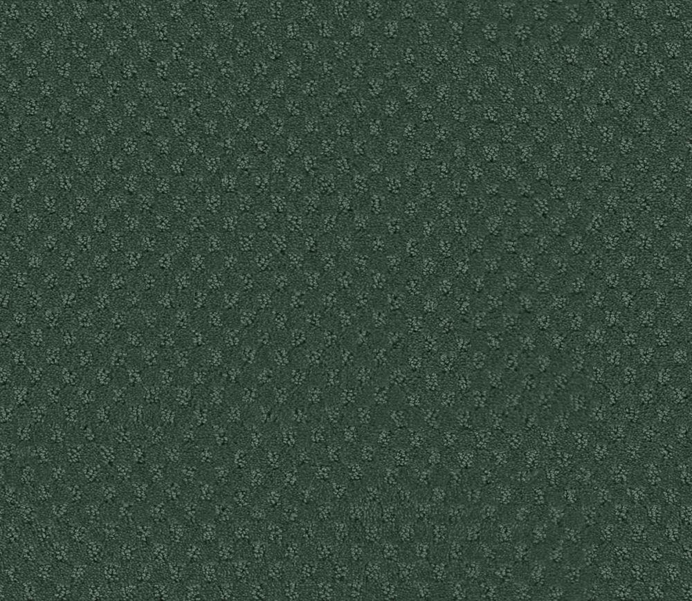 Inspiring II - Emerald Isle Carpet - Per Sq. Ft.