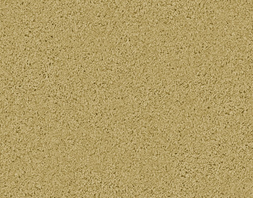 Enticing II - Khaki Carpet - Per Sq. Ft.