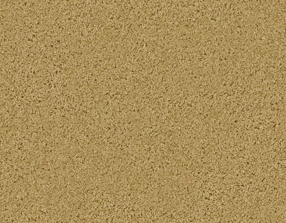 Enticing II - Maraïcher tapis - Par pieds carrés
