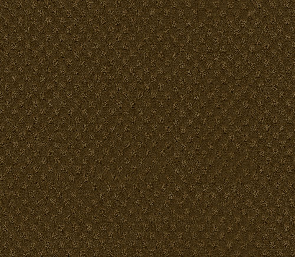 Inspiring II - Frontier Carpet - Per Sq. Ft.