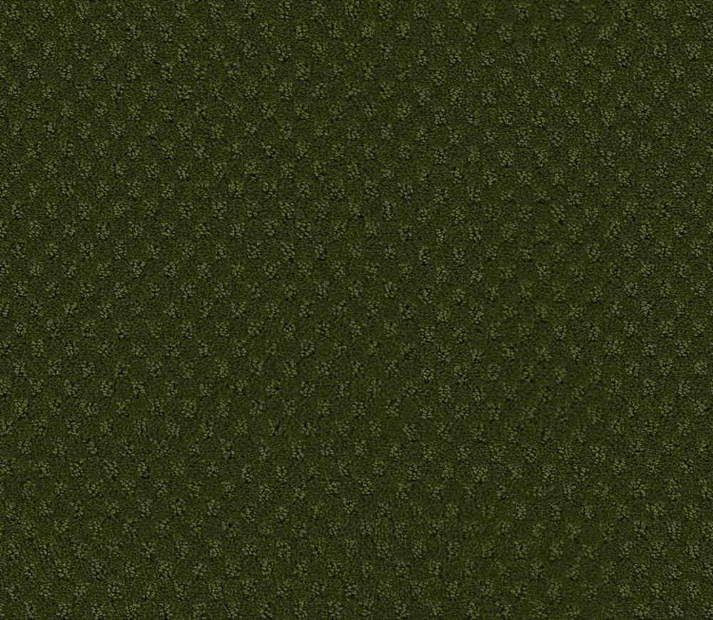 Inspiring II - Marsh Carpet - Per Sq. Ft.