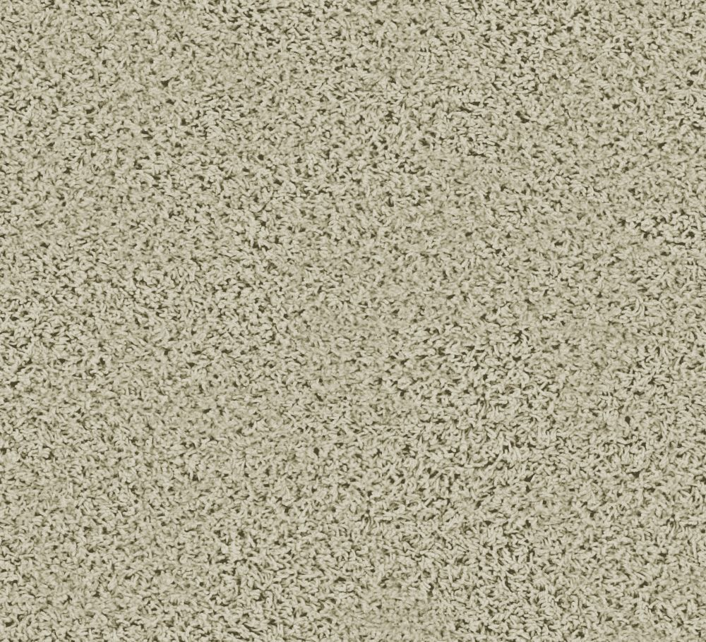 Pleasing I - Éclaircie tapis - Par pieds carrés