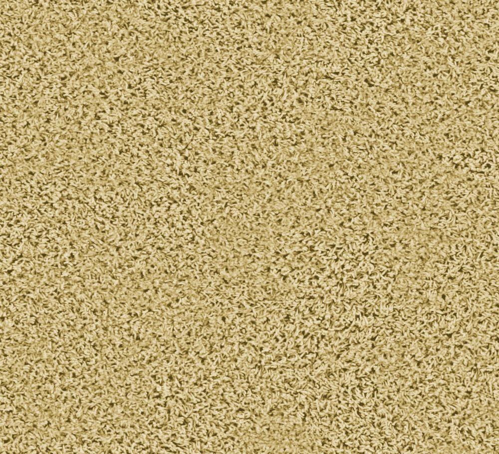 Pleasing I - Parchment Carpet - Per Sq. Ft.