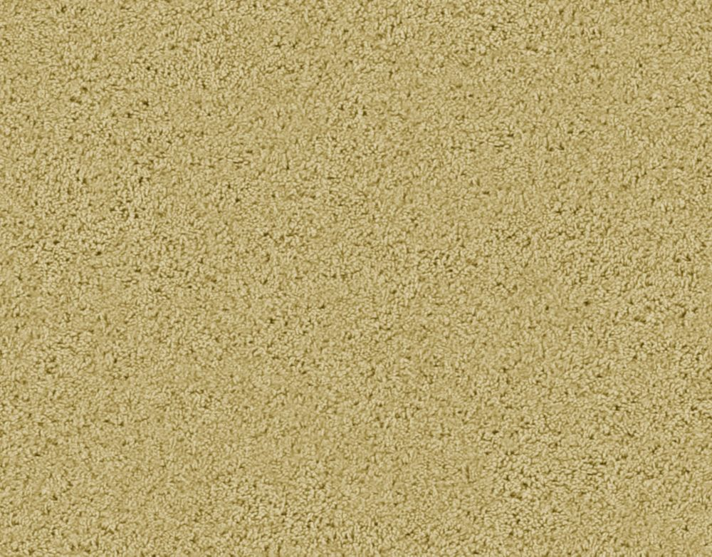 Enticing II - Sandstorm Carpet - Per Sq. Ft.