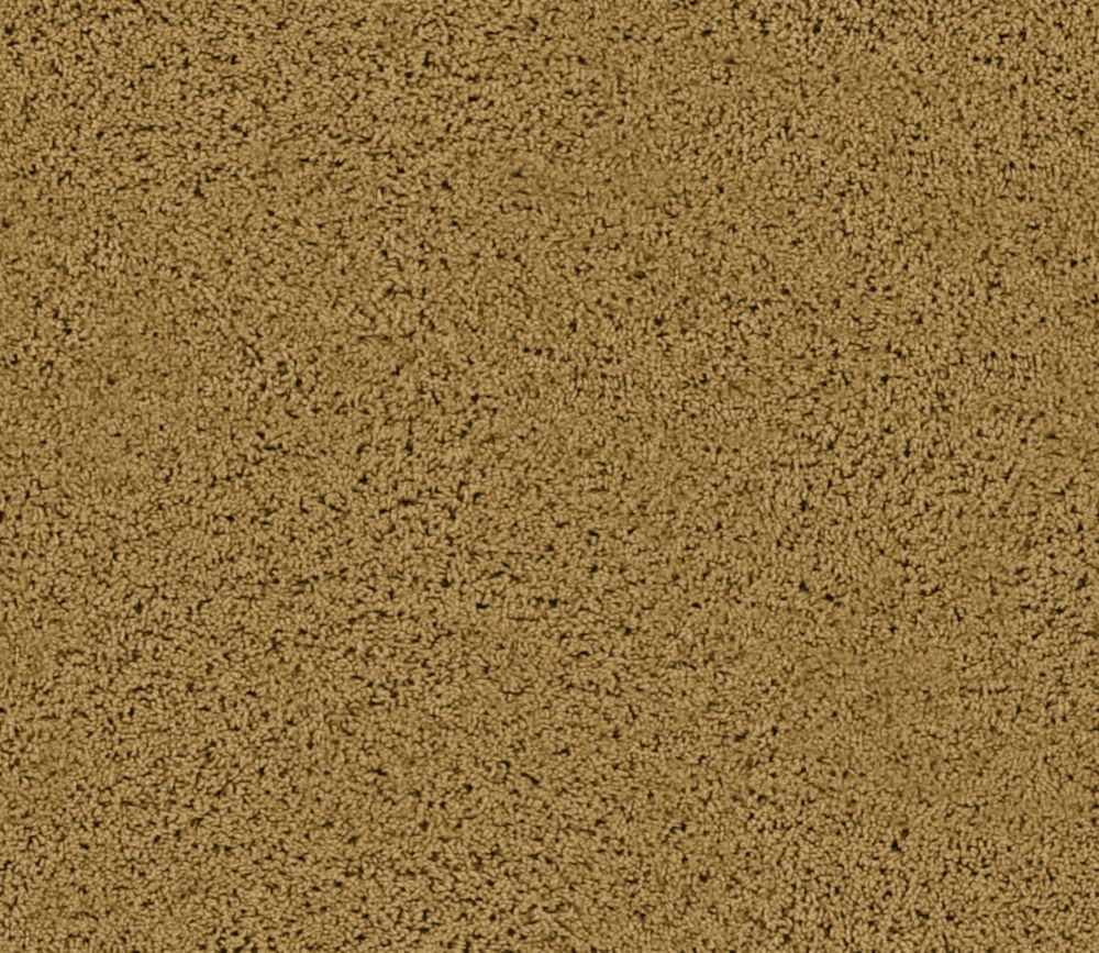 Enticing I - Spice Carpet - Per Sq. Ft.