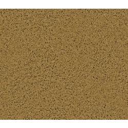 Beaulieu Canada Enticing I - Spice Carpet - Per Sq. Ft.