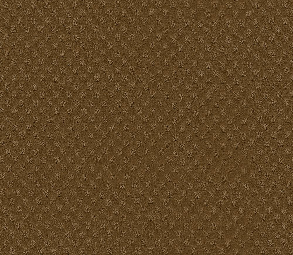 Inspiring II - Buckskin Carpet - Per Sq. Ft.
