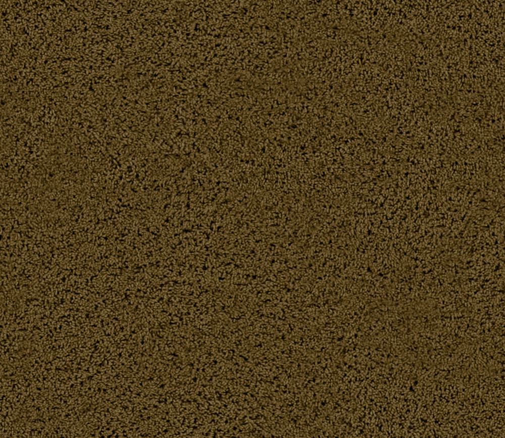 Enticing I - Deep Canyon Carpet - Per Sq. Ft.