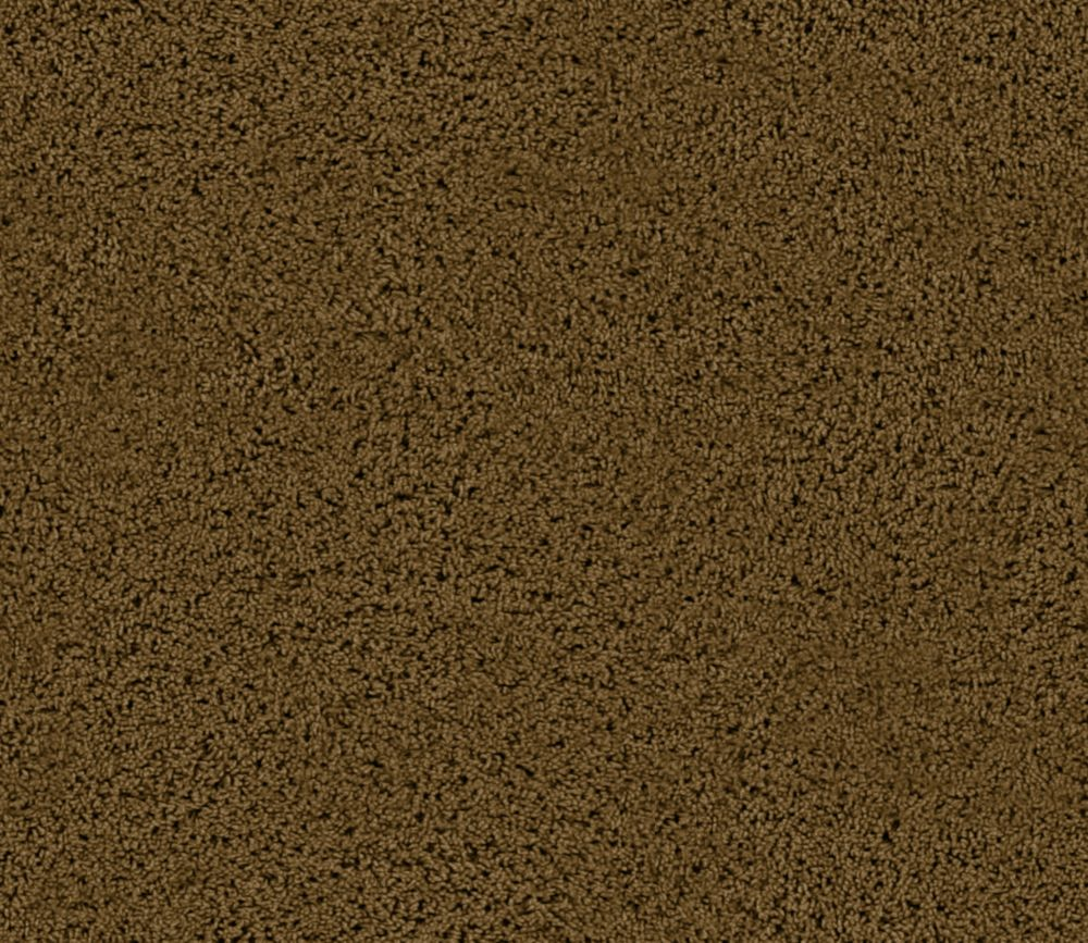 Enticing I - Buckskin Carpet - Per Sq. Ft.
