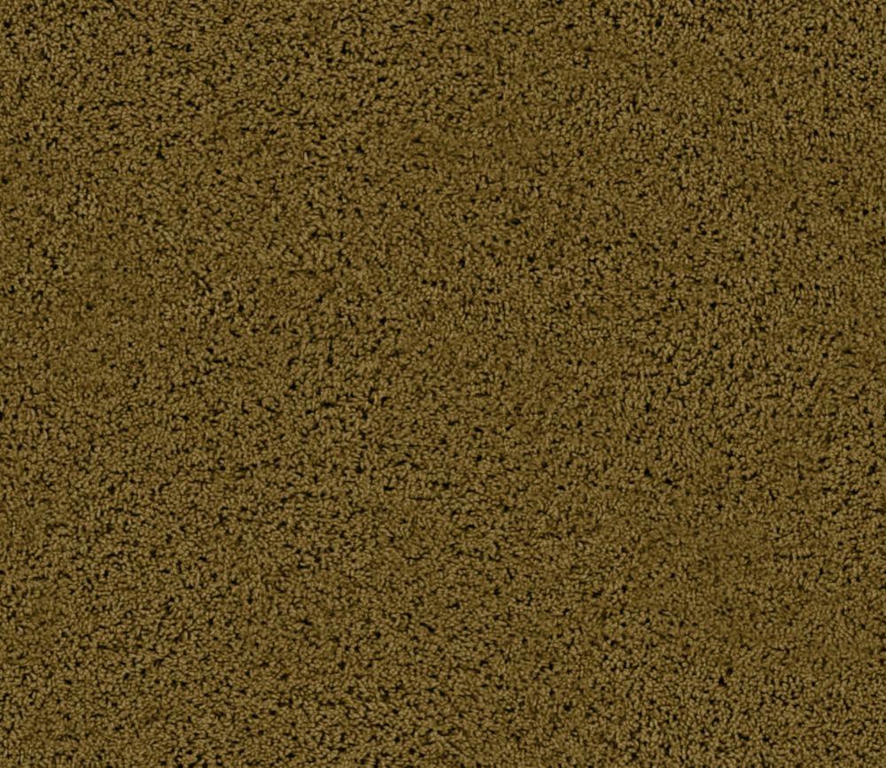 Enticing I - Thicket Carpet - Per Sq. Ft.