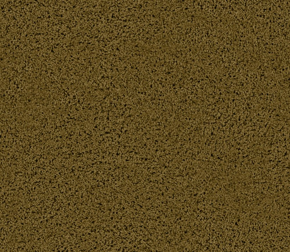 Enticing I - Thicket Carpet - Per Sq. Ft.