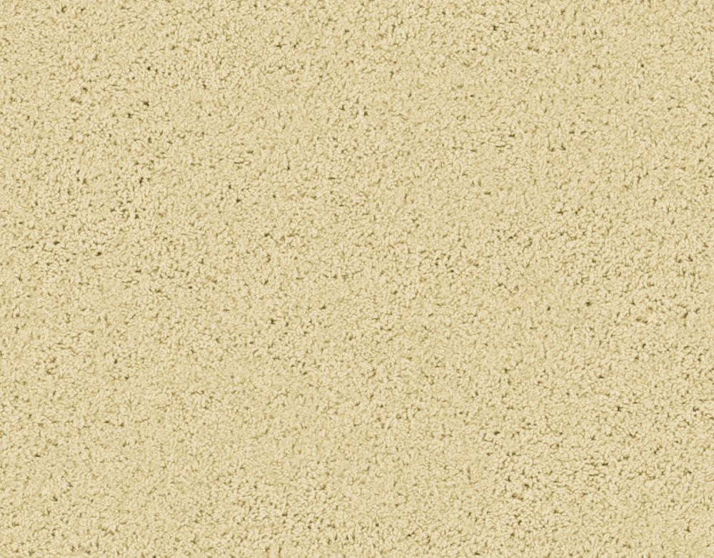 Enticing II - Grain Carpet - Per Sq. Ft.