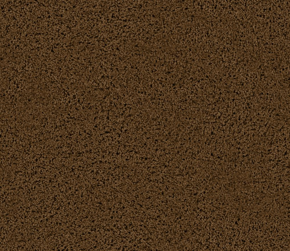 Enticing I - Antique Brown Carpet - Per Sq. Ft.