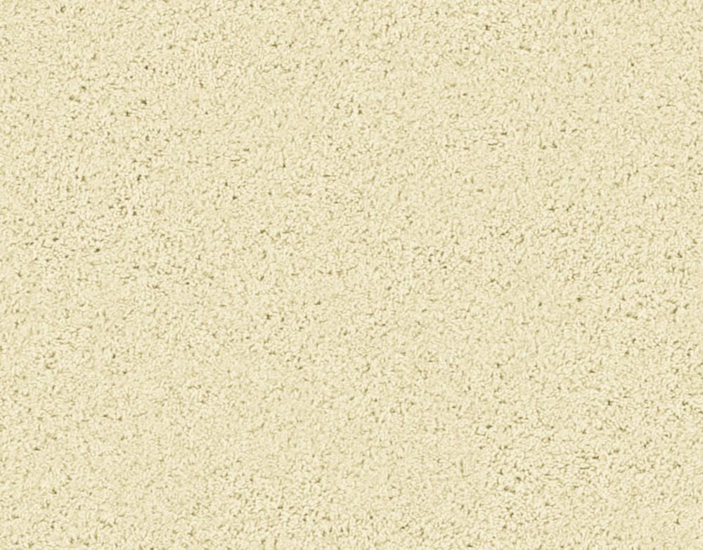 Enticing II - Canvas Carpet - Per Sq. Ft.