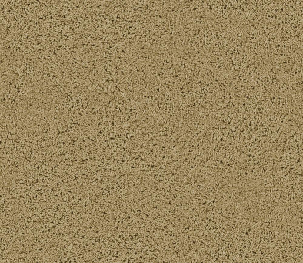 Enticing I - Fauve nouveau tapis - Par pieds carrés