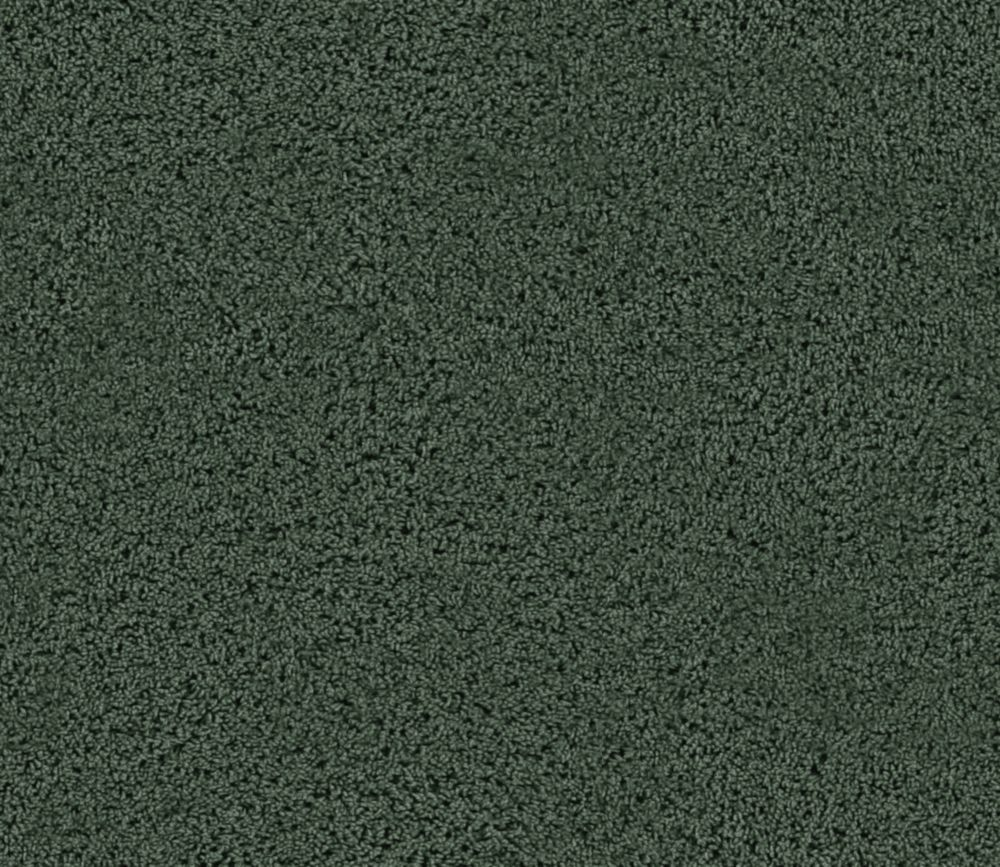 Enticing I - Emerald Isle Carpet - Per Sq. Ft.