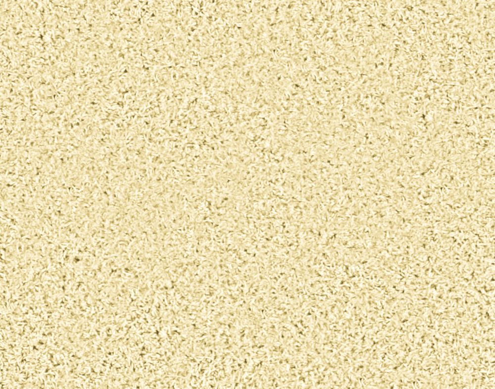 Pleasing II - Moonstruck Carpet - Per Sq. Ft.