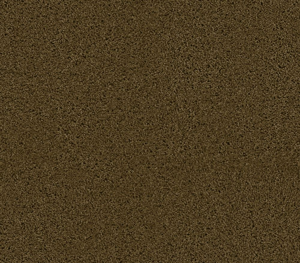 Beautiful I - Frontier Carpet - Per Sq. Ft.