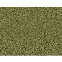 Beaulieu Canada Pleasing II - Garden Club Carpet - Per Sq. Ft.